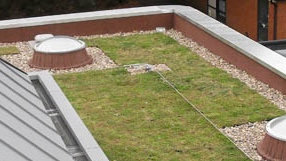 Commercial Green Roofing