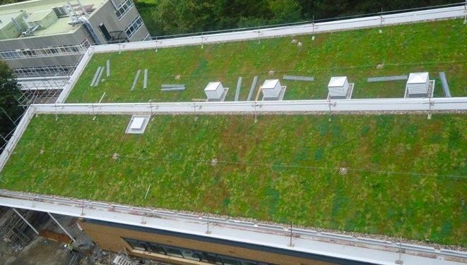 Austin Roof Installation Contractors